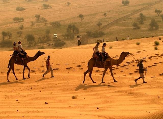 Desert safari camp sam Jaisalmer